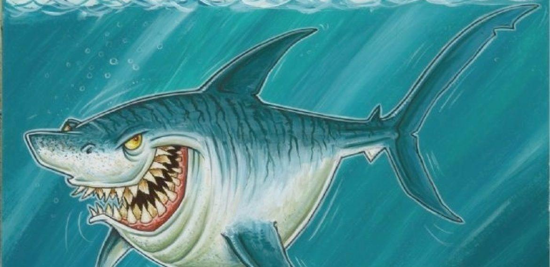 Shark Character Design